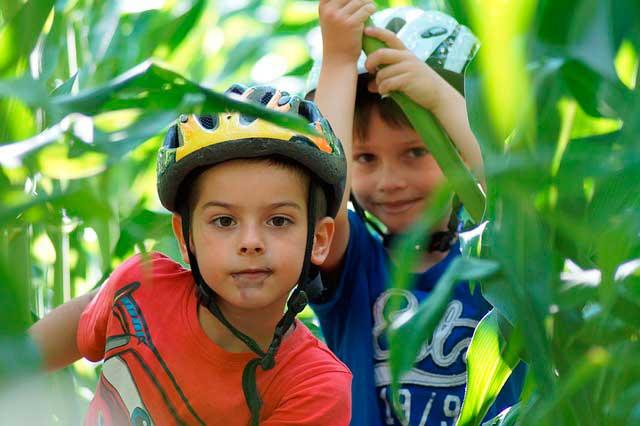 Mauro Libi Tips para alimentar a los niños en vacaciones - Tips para alimentar a los niños en vacaciones